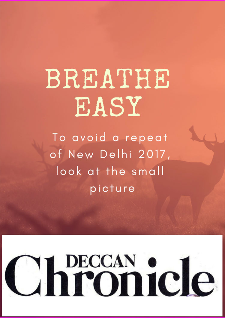 Breathe Easy: To Avoid a Repeat of New Delhi 2017, Look at the Small Picture