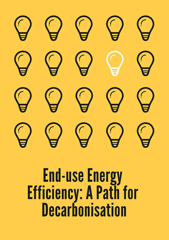 End-use Energy Efficiency: A Path for Decarbonisation