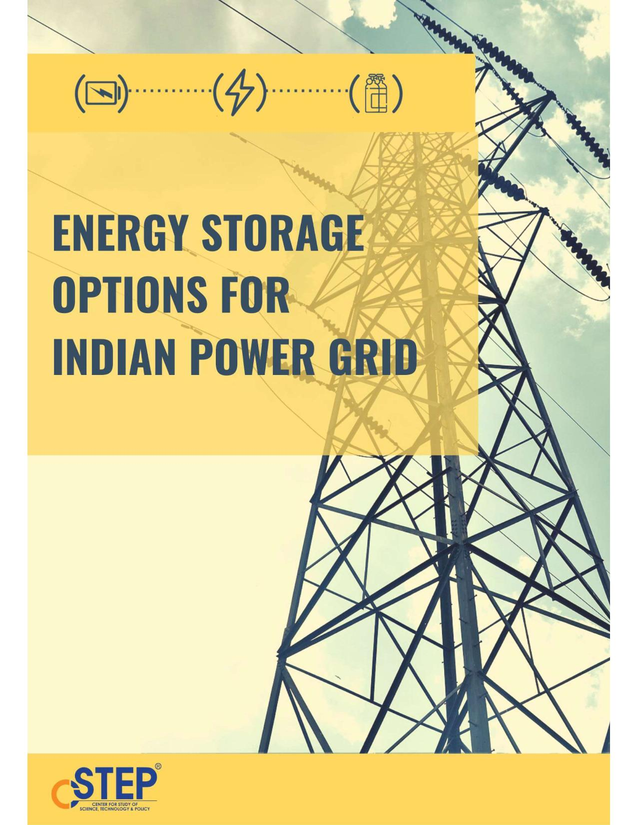 Energy Storage Options for Indian Power Grid